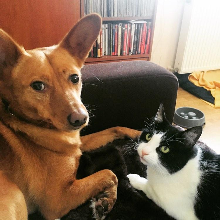 Pola i Rudy